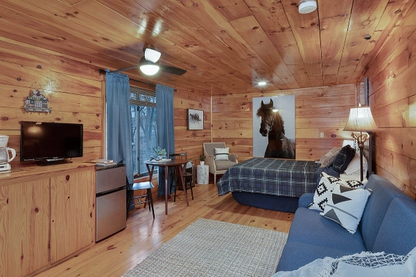 Little Cabin 3 - Living space