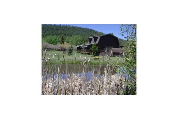 Lazy Bear Cabin with small pond. Sleeps 8