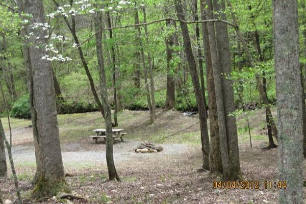 Private, Primitive Tent Sites