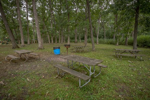 East open picnic area - no shelter - 50 people maximum