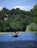 Float Through Vast Vineyards & Majestic Redwoods...
