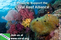Coral Reef Alliance Partner