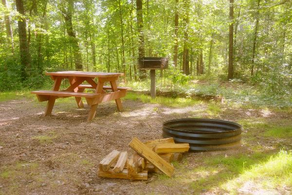 Charcoal grill, picnic table, and fire rings at every cabin